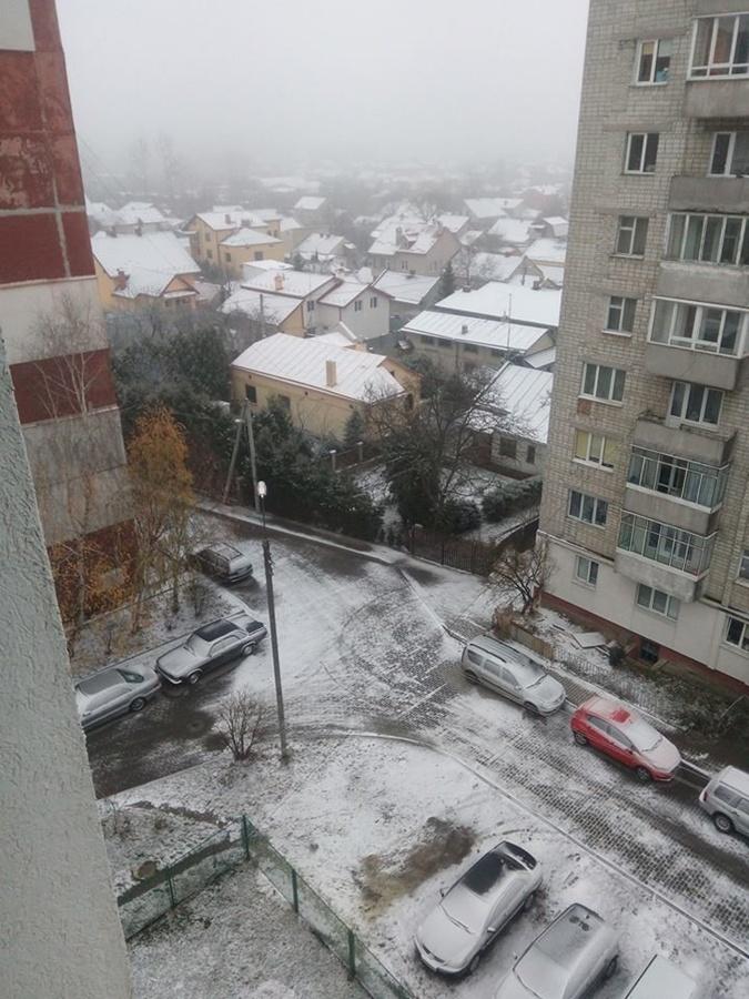Погода в Украине: во Львове наслаждаются первым снегом, а в Харькове уже гуляют по льду фото 3