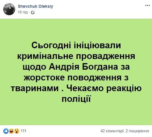 За козла не ответит. Юристы и зоозащитники о наказании Андрея Богдана за поведение в зоопарке