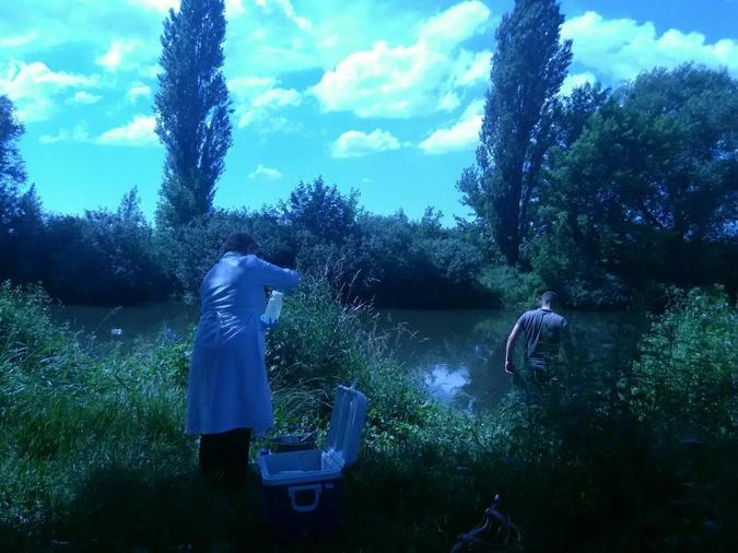 Специалисты уже взяли пробы воды.  Фото:facebook