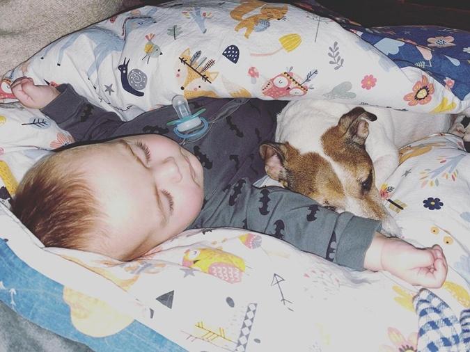 Сын Онуки Саша задремал рядом с собакой.