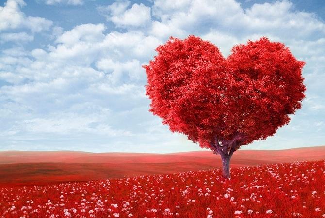 Лучшие поздравления с Днем Святого Валентина. Фото: Xvatit.com