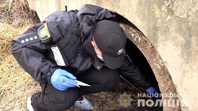 Убийство активиста в Киеве, убийство мандич