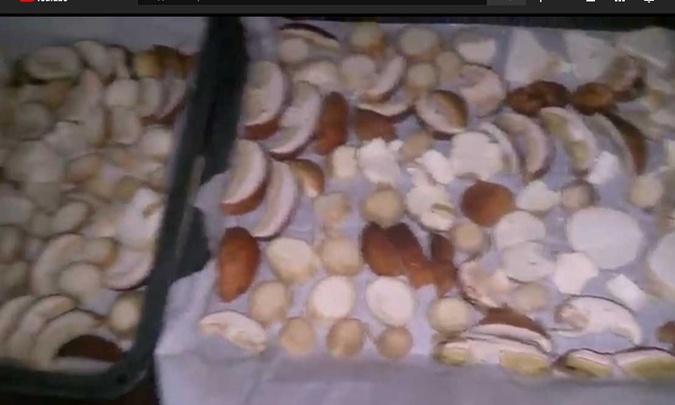 как сушить грибы дома без сушилки