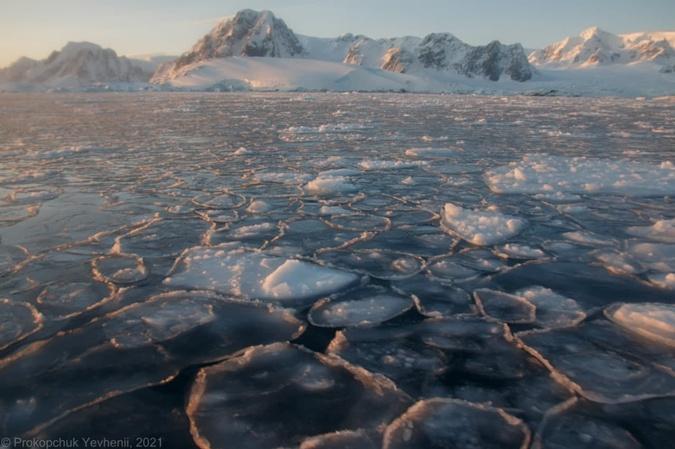 25-я антарктическая экспедиция