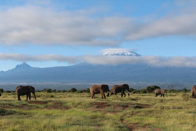 Килиманджаро виднее из Кении.