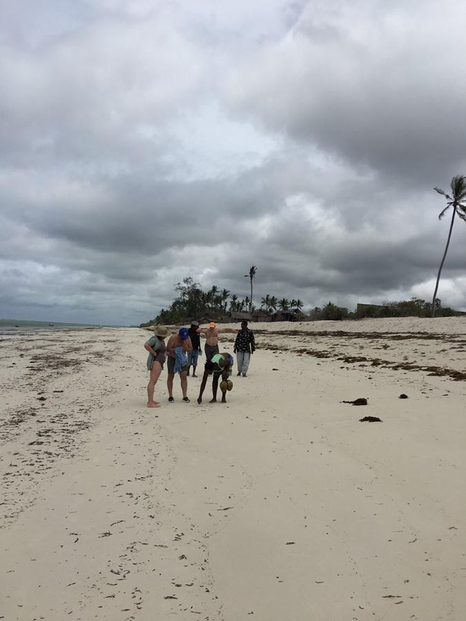 Лучший пляж пустует.