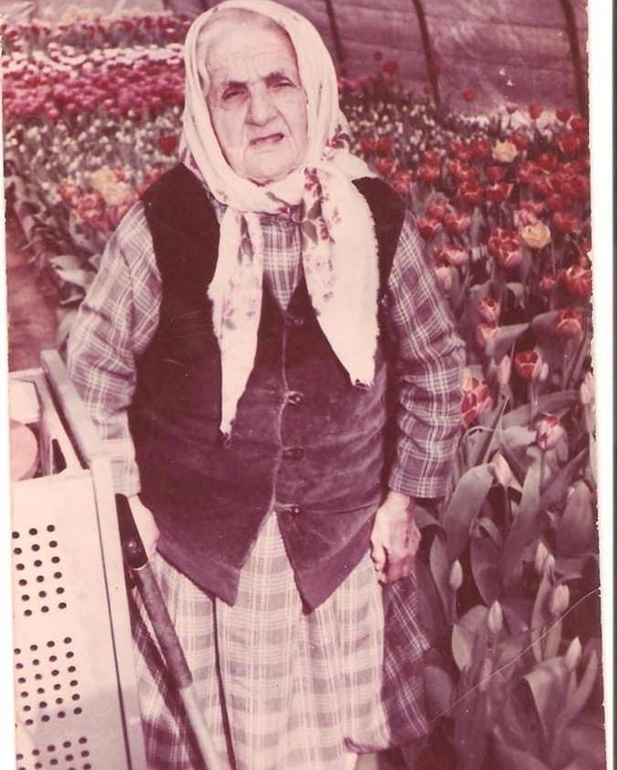 Прабабушка Джамалы