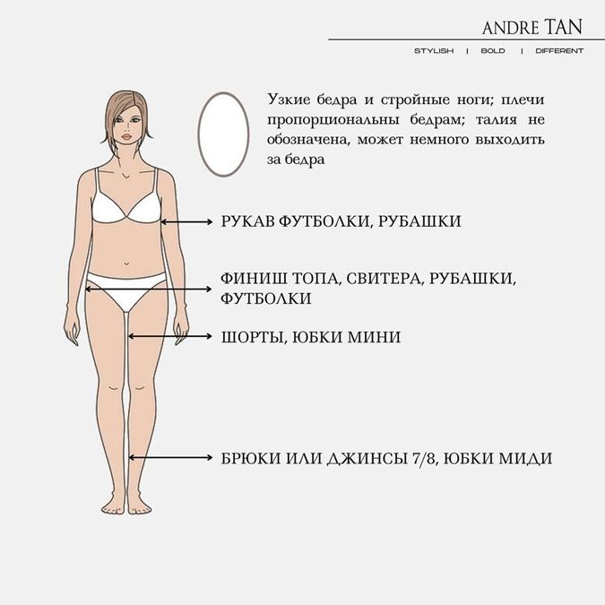 Рекомендации для женской фигуры длина одежды тип круг