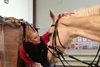 Дареному коню в зубы не смотрят, а вот в глаза никто не запрещал!