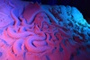 Музей песчаных скульптур на ВДНХ