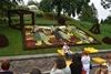 выставка цветов ко Дню Независимости