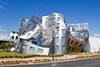 Центр здоровья мозга Лу Руво