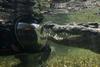 Фотосессия с самой кровожадной рептилией