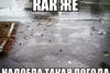 Приколы дождь