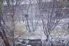 в киеве снег