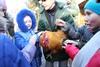 петух в киевском зоопарке