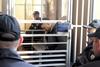 В Днепре закончился суд над убийцей полицейских Александром Пугачевым