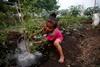 пожары в индонезии