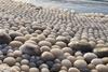 ледяные шары в Финляндии