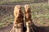 скульптуры животных из дерева в парке горького одесса