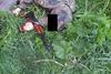 Расстрел людей в Житомирской области фото