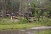 ураган салли
