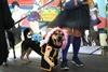 Косплей-шоу для собак на Comic Con Ukraine 2021