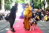 Косплей-шоу для собак на Comic Con Ukraine 2021Косплей-шоу для собак на Comic Con Ukraine 2021