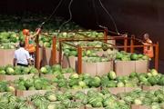 Эпопея продолжается: новую баржу с арбузами ждем через 4 дня