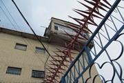 За колючей проволокой: заключенные едят бутерброд, а инспектор смотрит голодными глазами
