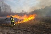 Украина в огне: из-за весенних палов погиб ребенок и обгорела женщина