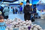 Два урожая картошки – что позволяет новый климат выращивать в Украине