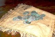 Пенсионеры из Житомирской области нашли в огороде княжеский клад