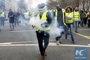 Чего требуют  желтые жилеты : зарплаты поднять, из НАТО и ЕС выйти, ГМО запретить
