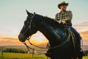 Львовский ковбой: Бросил бизнес в городе и уехал к лошадям