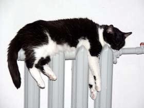 Отопление из-за бабьего лета отключать не будут