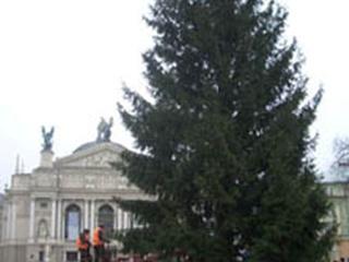 Перед Оперным установили елку