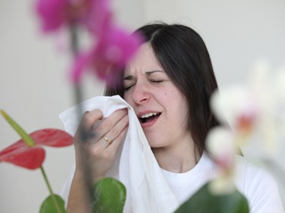 Десять вопросов об аллергии