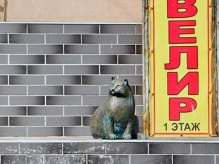 В Одессе поставили памятник  смотрящей  за мясным корпусом кошке