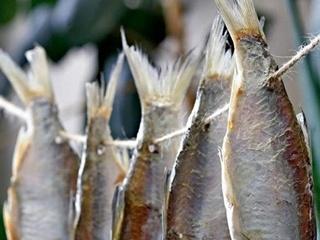 Киевлянин после употребления рыбы попал в больницу с ботулизмом