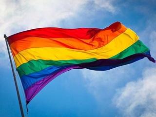 В Питере задержали более 29 человек за ЛГБТ-акцию