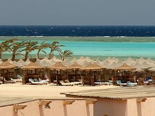 Смерть туриста от акулы в Египте: тело чеха нашли без рук и ноги