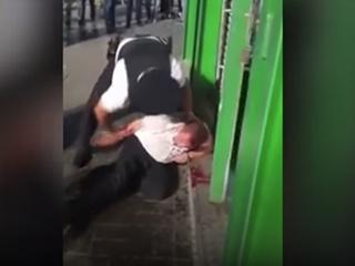 В аэропорту  Домодедово  полиция избила мужчину на глазах жены и сына