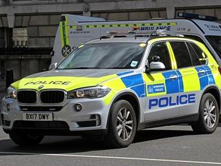 В Великобритании полиция заявила о новом отравлении неизвестным химикатом