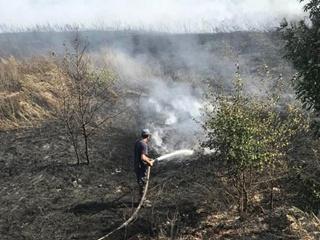 Пожар в лесу Харьковской области тушат 140 спасателей, самолет и вертолет
