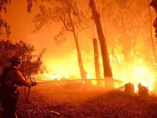 В Украине снова объявлен высокий уровень пожарной опасности