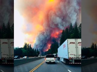 В Калифорнии лесной пожар заставил людей оставить автомобили на трассе
