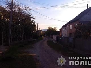 Житель Закарпатья 15 часов держал на мушке электриков, которые пришли отключать свет