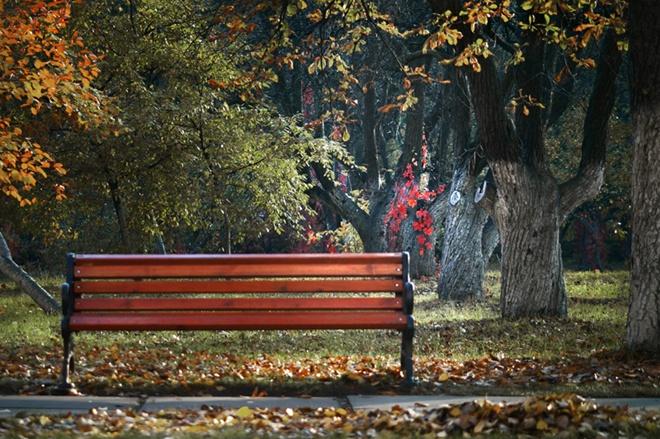 Будто ты вымолвила негромко осень осень всех сторон меня обступила
