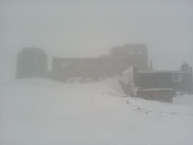 Зима летом: в Карпатах в первый день лета выпал снег (ФОТО)